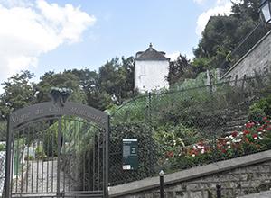 몽마르트르 포도밭